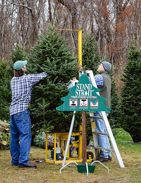 ... Clark's Tree Farm ... - Clarks Christmas Tree Farm